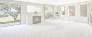 Best Calgary Carpet Cleaning Company